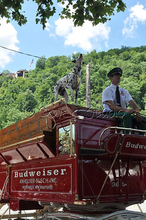 Budweiser Clydesdales Driver and Box