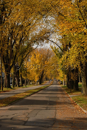 Luzerne Street of Johnstown in Autumn
