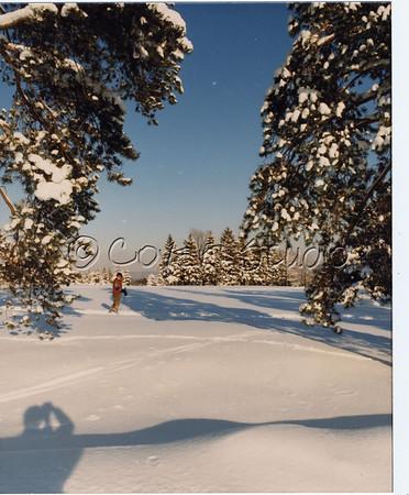 Sunnehana in Winter