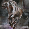 Barbaro- SOLD