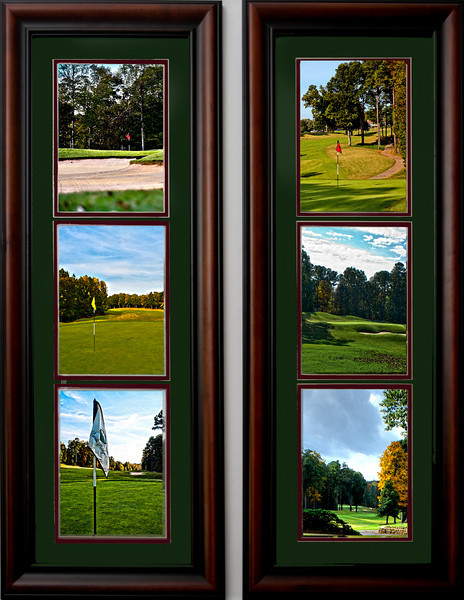 "There are two separate 12x36 framed photos, each containing three 8""x10"" photos. Each of these framed photos is priced at $225. http://www.teewayne.com  .teewayne photography Cary, NC Photographer, Cary, NC Gallery  - © TeeWayne Photography"