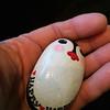 Rock_Happy-Happy Penguin_IMG_2915