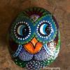 Rock_owl_IMG_2925