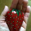 Rock_strawberry_IMG_2911