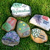 Garden plant identifier rocks