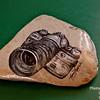 Camera stone_4618