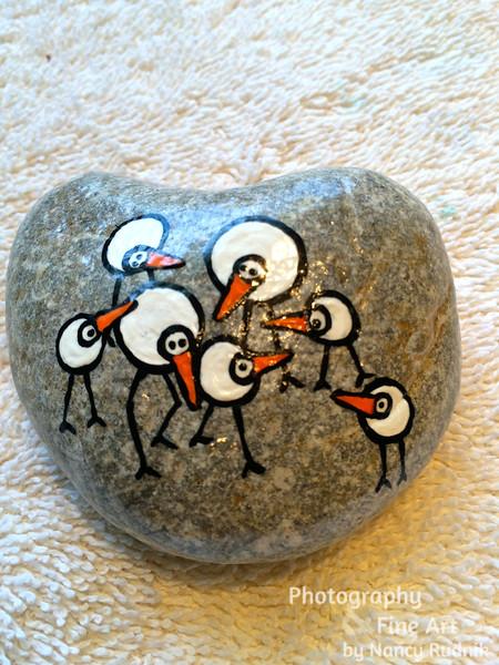 Rock_birdies_IMG_2918