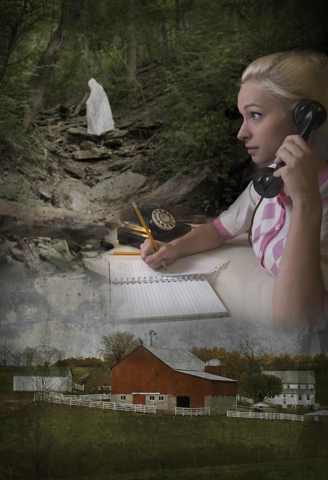 Book #6: The Secret of Red Gate Farm v.02