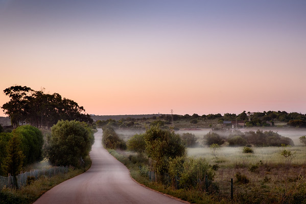 Misty morning in the Portuguese countryside