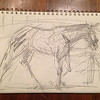 Sketch of Kentucky Oaks contender, Midnight Lucky. Graphite pencil on paper.