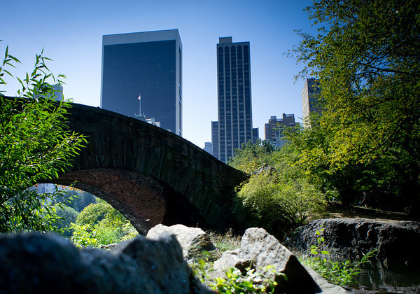 New York City - Central Park © TeeWayne Photography 2011