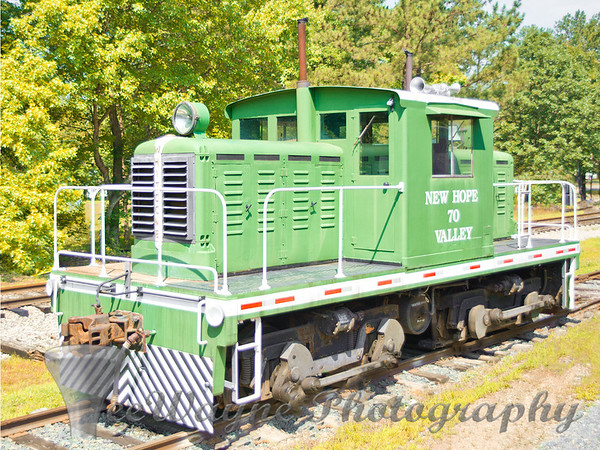 'Bonsal Railroad', 'TeeWayne Photography', Cary, NC Photographer, Cary, NC Gallery  - © TeeWayne Photography Bonsal Railroad - New Hope Valley Railroad