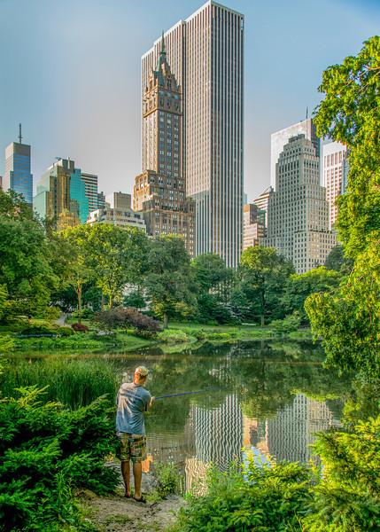 Central Park, Fine Art Photographs by TeeWayne Photography
