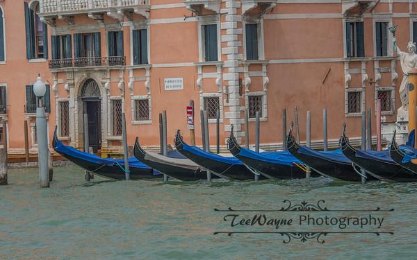 _TD56088-Venice3plus-LG