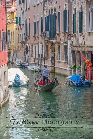 _TD56208-Venice3plus-LG