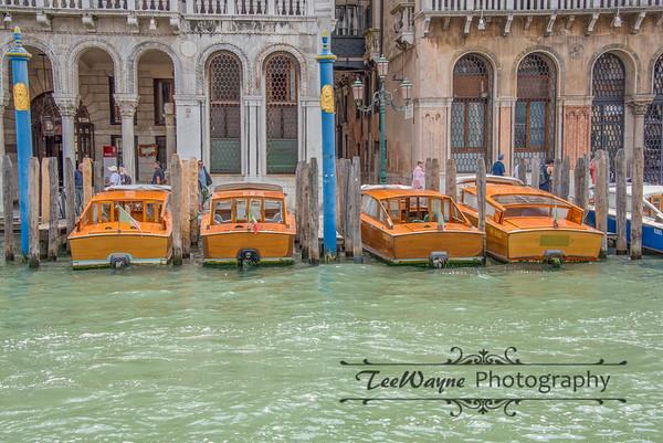 _TD56108-Venice3plus-LG