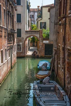 _TD56178-Venice3plus-LG