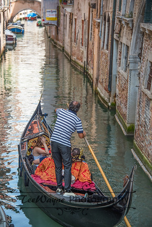 _TD56187-Venice3plus-LG