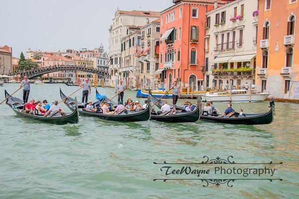 _TD56101-Venice3plus-LG