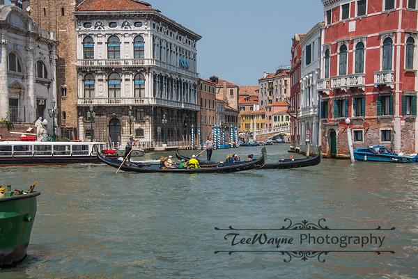 _TD56147-Venice3plus-LG