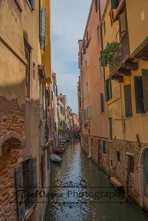 _TD56205-Venice3plus-LG