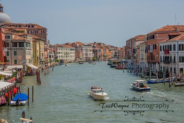 _TD56123-Venice3plus-LG