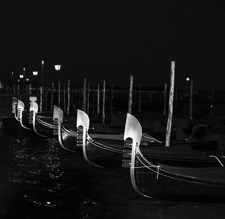 _TD55966-Venice3plus-LG