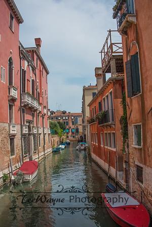 _TD56220-Venice3plus-LG