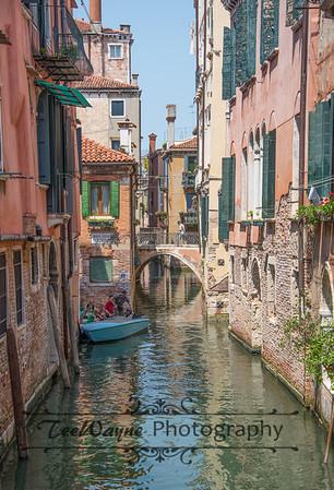 _TD56181-Venice3plus-LG
