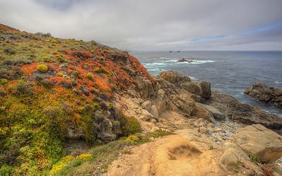 Orange Hill Pacific Coast Highway, California