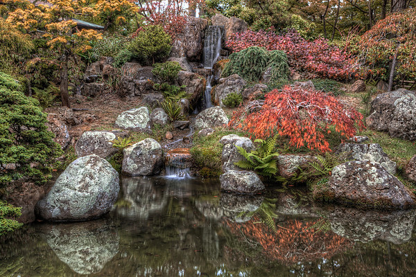 Japanese Tea Garden San Francisco, California
