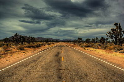 Driving through the Mojave Desert