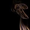 cartoon dog head, from the smoke photography sessions<br /> <br /> dedicated to Paul Daniel
