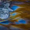 autumn waterscape, 11/1/2009, #70