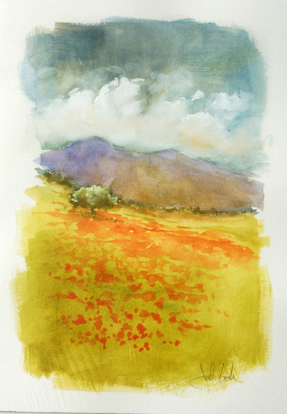 watercolor of poppy field