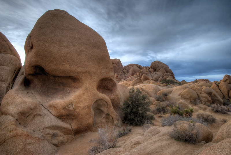 Skull Rock Joshua Tree National Park, California.  Copyright © 2009 All rights reserved