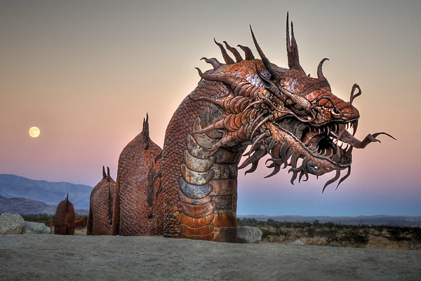 """Dragon of the Desert"""