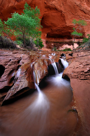 Falls in Coyote Gulch Glen Canyon National Recreation Area, Utah.  Copyright © 2008 All rights reserved.