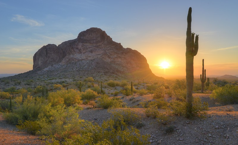 Springtime Sunrise in the Desert