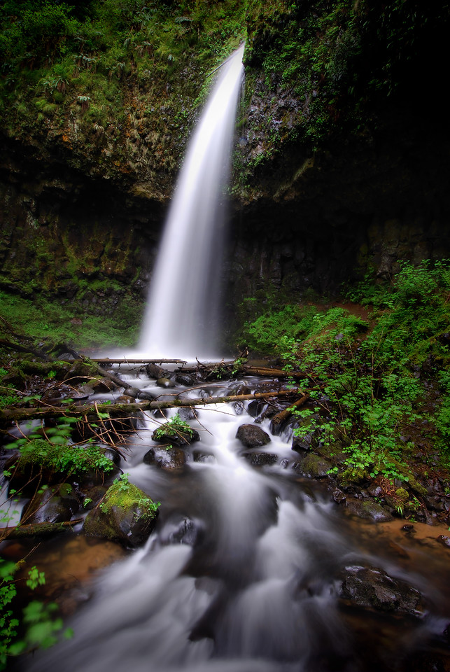Upper Latourell Falls.  <br /> Columbia River Gorge, Oregon.<br /> <br /> Copyright © 2008<br /> All rights reserved.