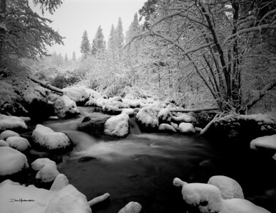 Creek-at-first-snow-B&W