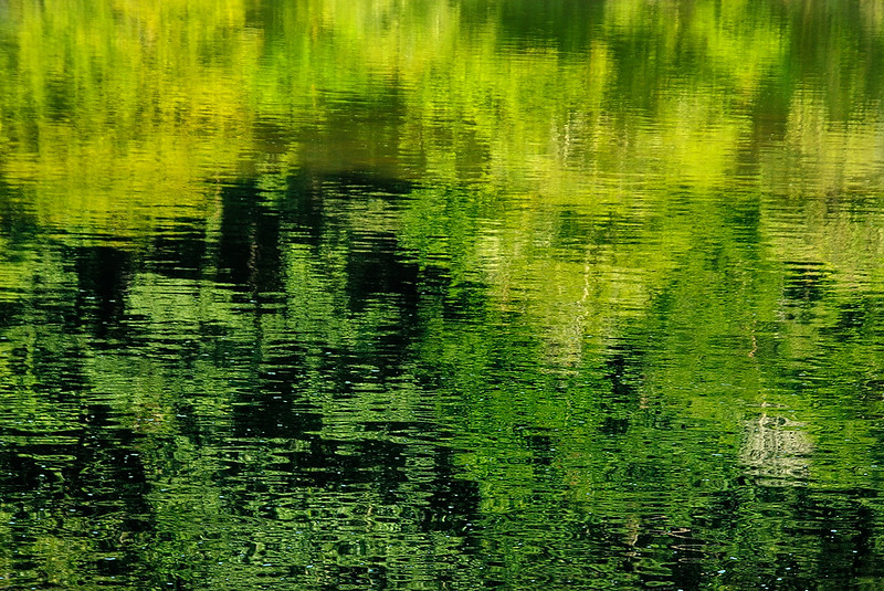 (Summer) Reflections #2