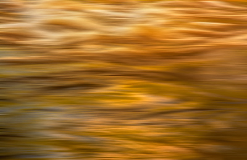 Chattahoochee River Study - Color Abstract #20