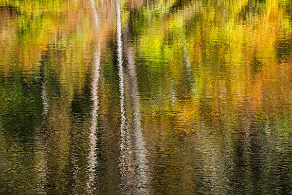 Reflections On Ogle Lake #1