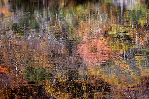 Chattahoochee River Study - (Fall) Reflections #5