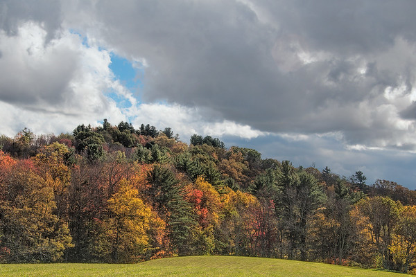 Autumn Trees On The Blue Ridge Parkway