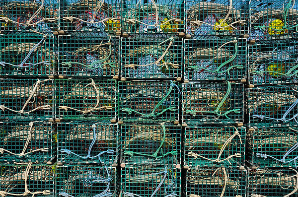 Twenty Five Lobster Traps