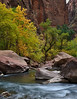 Upper Zion Canyon