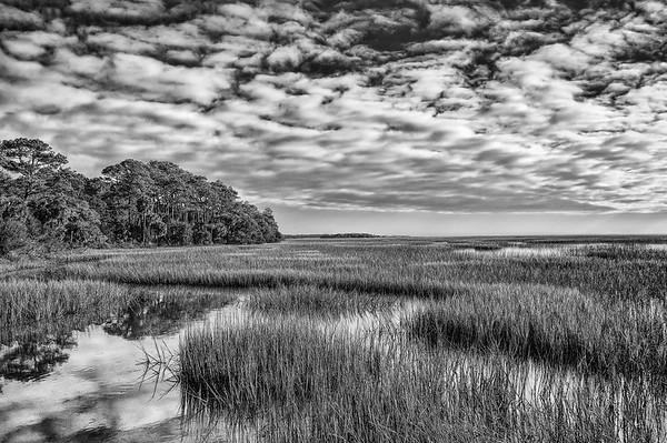 Botany Bay Marsh
