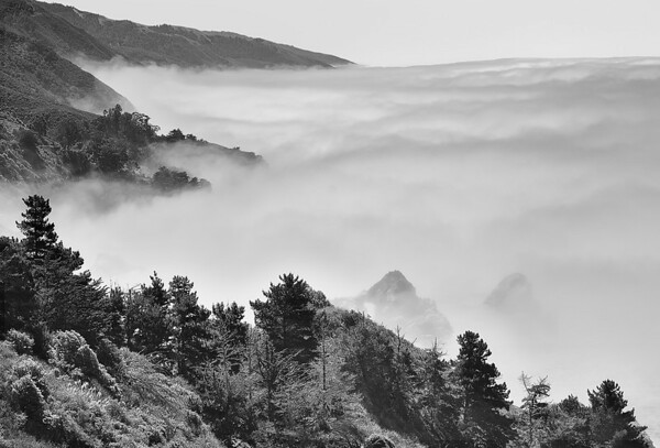 Ocean Fog On Big Sur Headlands